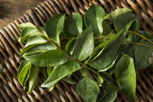 Take a Leaf from your Kitchen, Use Curry Leaves for Prevention